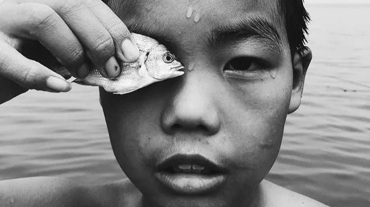2018 iPhone摄影大赛获奖展示,看看别人如何用手机拍大片!